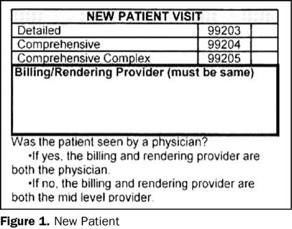 Medical Billing Codes: 99204 Medical Billing Code